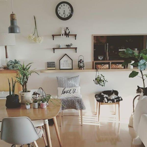 猫との暮らしをちょっとした工夫やDIYでもっと素敵に♪ 簡単オシャレテクニック16選