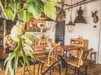 木製家具や雑貨で作る癒し空間☆お部屋をくつろぎの空間にするためのポイントをご紹介