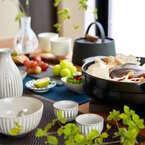 和食器も【ニトリ】で見つけよう!お手頃価格で使いやすい和食器特集☆
