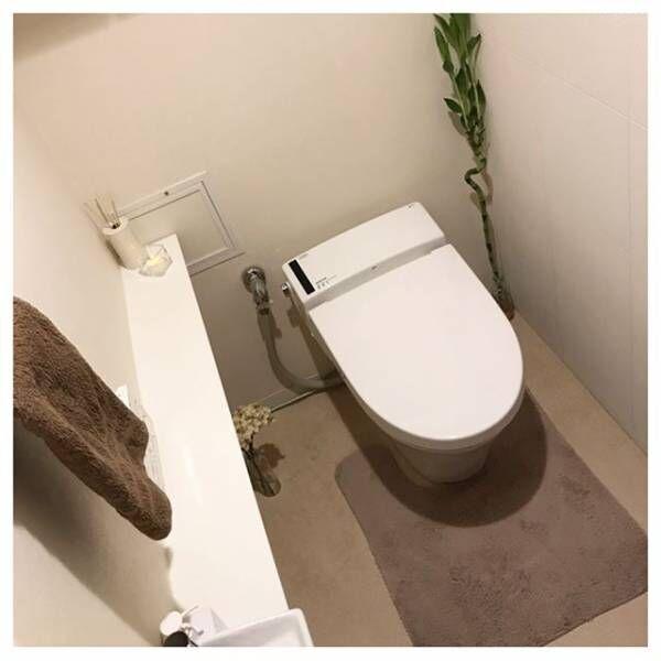 トイレにグリーンをおしゃれに飾ろう!3