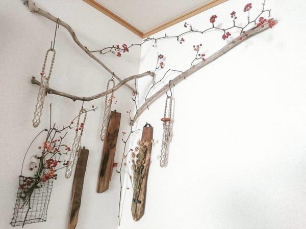 流木×観葉植物3