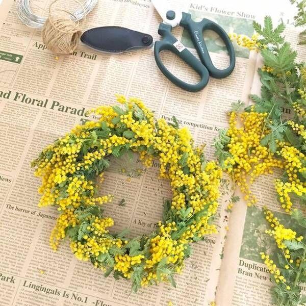 春の訪れを告げる花、ミモザ。近づく春をお部屋で感じて楽しもう♡