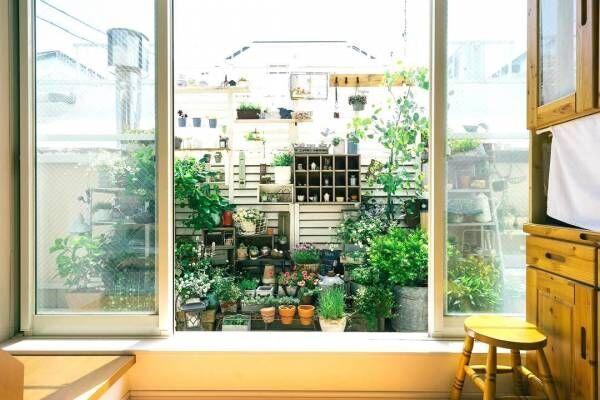 冬から始めるベランダガーデンDIY♡春まで楽しめる植物で季節を楽しむ