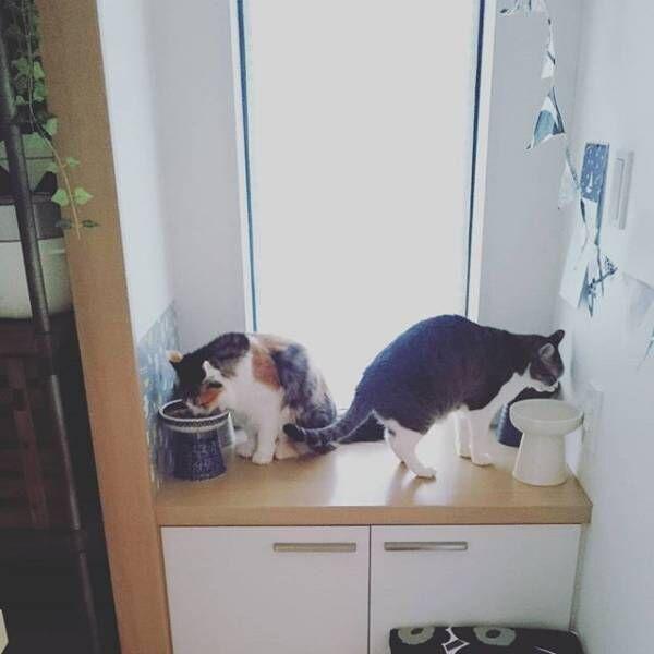 出窓をお食事スペースに