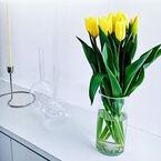 インテリアに明るいアクセントを!春を彩る黄色い花を飾ってみよう