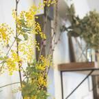 お部屋の雰囲気も衣替え!春インテリアを作るコツ15選をご紹介します♡