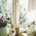 窓際インテリアで華やかさアップ!お気に入りの飾り方を楽しもう♪