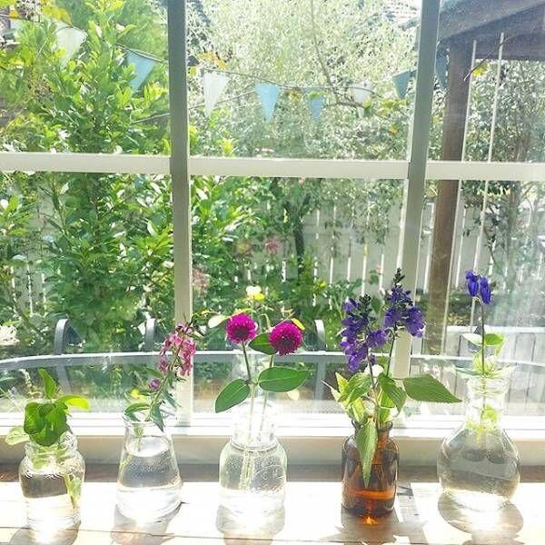 心地よい日差しを味わう♪春の窓辺を華やかに飾ったインテリア実例