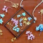 【連載】【セリア】のフラワーとガラスのフォトフレームでDIY!春インテリアを楽しもう