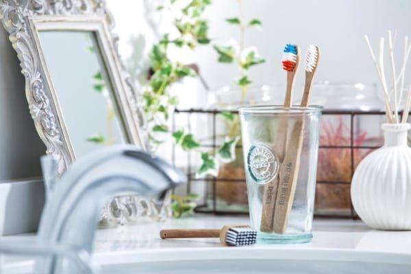 歯ブラシ収納3