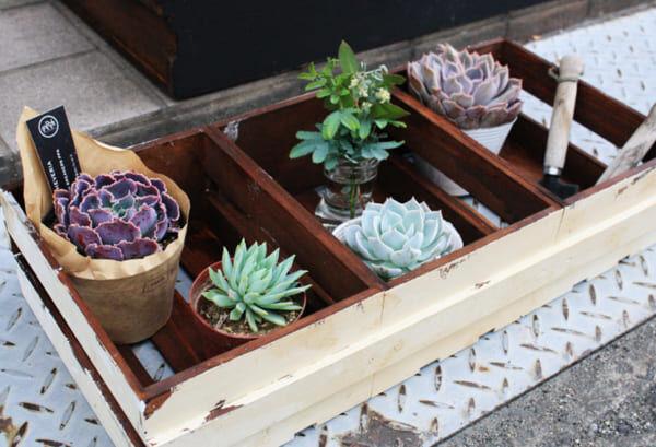 ガーデンボックス DIY2