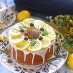 旬を迎える柑橘類を食べよう☆きれいな盛り付けで見た目から美味しく♪