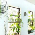 お部屋を夏らしくシフト!「グリーンカラー」で季節感のある爽やかインテリア特集☆