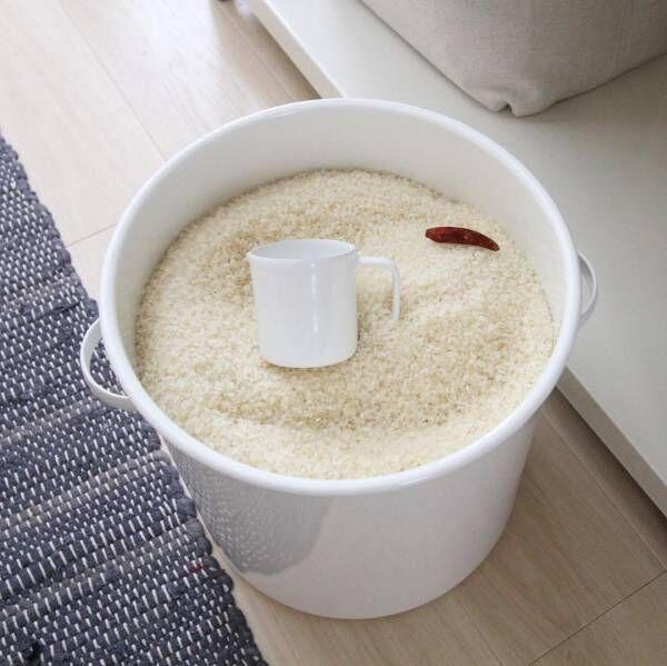 お米を上手に保存しよう!毎日食べる食材こそ収納方法にこだわって♪