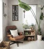 お部屋のアクセントに♡夏にオススメしたい観葉植物・花10選