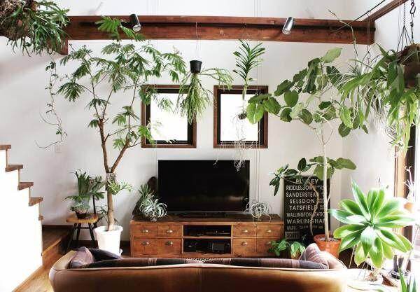 グリーンいっぱいの癒しあふれるお部屋