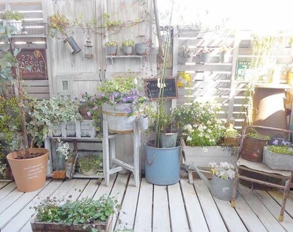 植物で楽しむベランダガーデニング