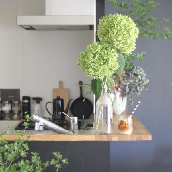 キッチン グリーン4