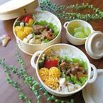 【セリア】ボヌールランチボックスのおしゃれなお弁当☆みんなの使用実例