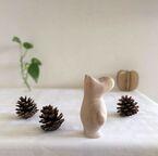 松ぼっくりをインテリアに♪植物を活用した秋テイストのお部屋作り