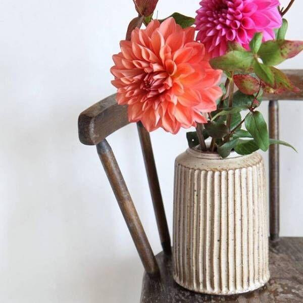 秋のお花を上手に生けよう!カラーバリエーションが豊富なダリアの楽しみ方