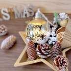 今年もやって来た!人気ショップ【ニトリ・ダイソーetc.】のクリスマス雑貨♡