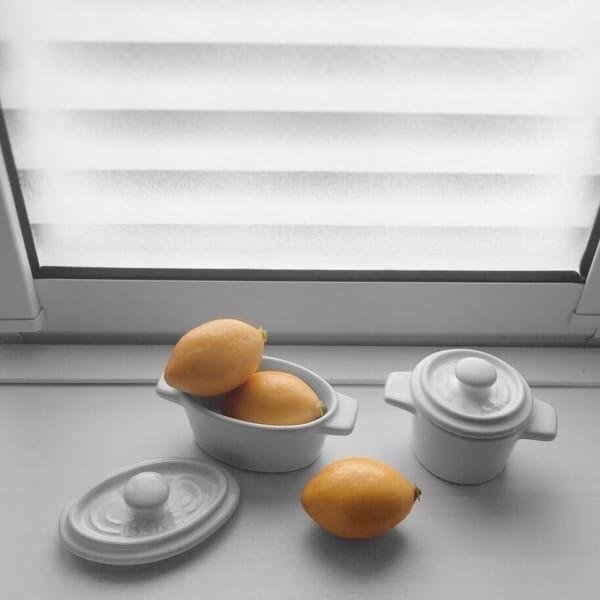 【ダイソー】ミニレモンとミニココットコラボ