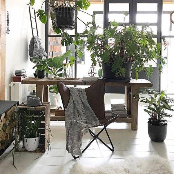 デザイナーズ家具で拘りあるインテリアを☆名作家具を置いた上質なお部屋をご紹介♪