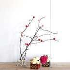 【連載】材料費220円!季節の行事「小正月」でもっと簡単な餅花の楽しみ方