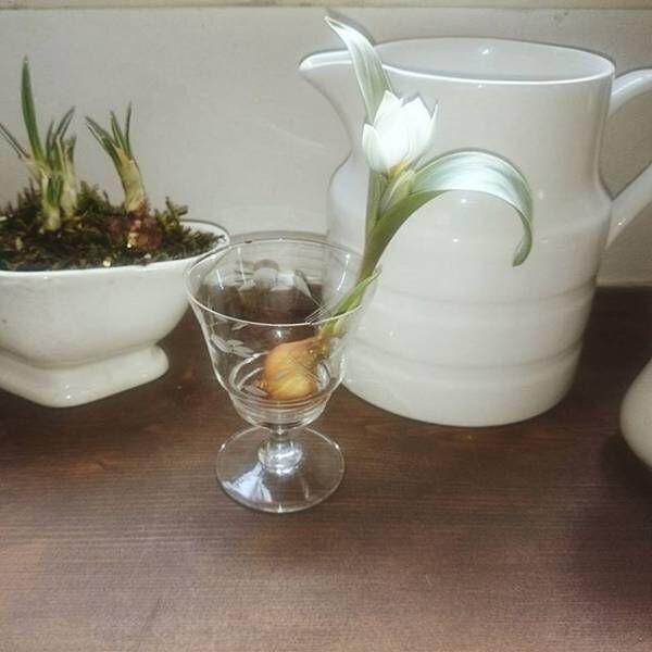 ワイングラスを花瓶として活用