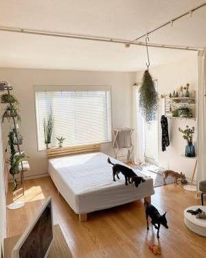 シンプルにまとめた寝室