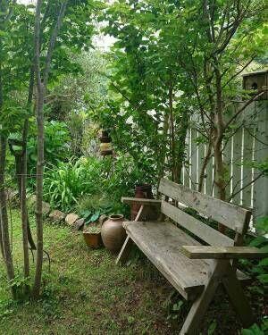 木陰に置かれたベンチでくつろげるお庭