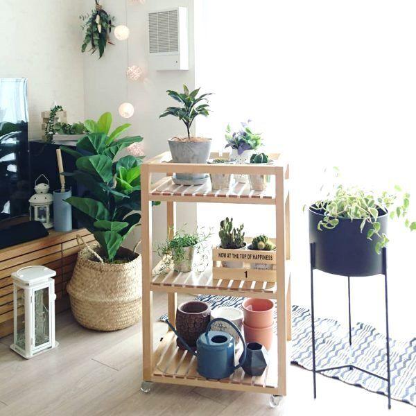 観葉植物は《プラントスタンド&ボックス》がおすすめ♪おしゃれインテリア実例
