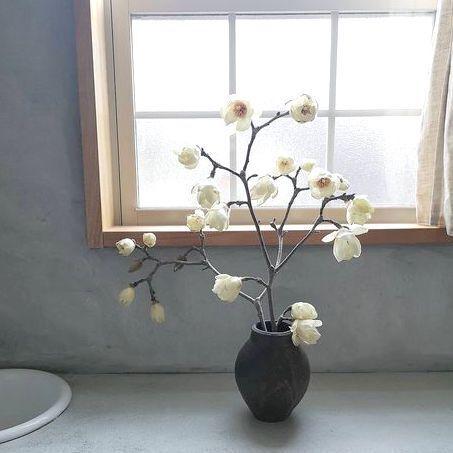 生花で暮らしに潤いを!どんなインテリアにもなじむ白いお花の飾り方