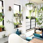 おしゃれで心地よいグリーンのある暮らし。お部屋別インテリアコーディネート実例集