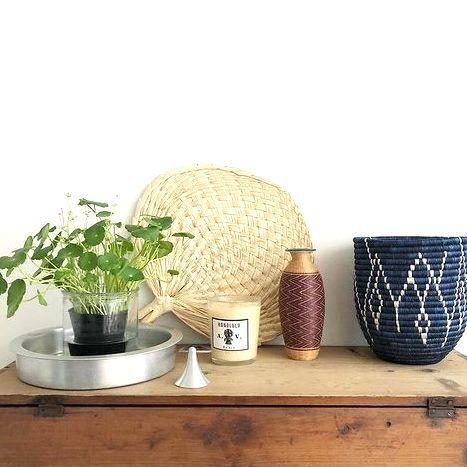 植物のある素敵な暮らし。センス良く飾って新生活を気持ちよく始めよう♪