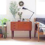 お部屋を爽やかに彩る!グリーンのあるおしゃれな暮らしを覗いてみよう