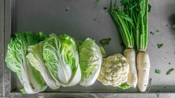 大根と白菜