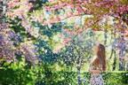春はやっぱり桜!今しか買えない2018年「桜コスメ」7つ