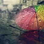 梅雨時期の3大トラブルとは?夏直前までに整える美肌管理法
