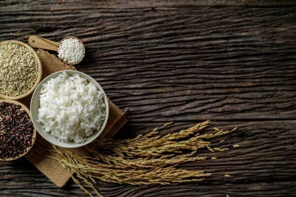 玄米の毒性「アブシシン酸」