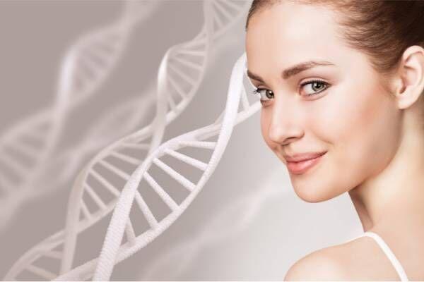 健康的な細胞作りに必要なことは?