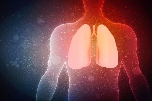 乾燥対策のキーワードは「肺」