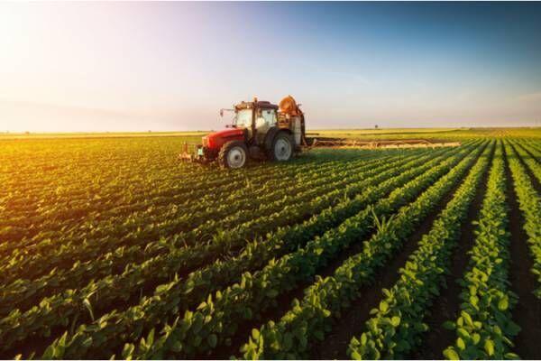 生産者とつながることで食の大切さを知ることができる