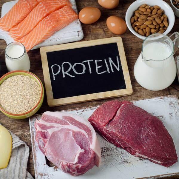 プロテインを摂るべき理由
