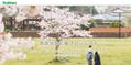 5月31日まで延長!【Gakken家庭学習応援プロジェクト】学習サービスを引き続き提供