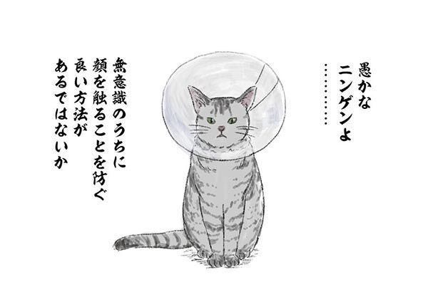 「人類へ、猫様からメッセージ」 まさかの感染対策に12万人が吹き出す