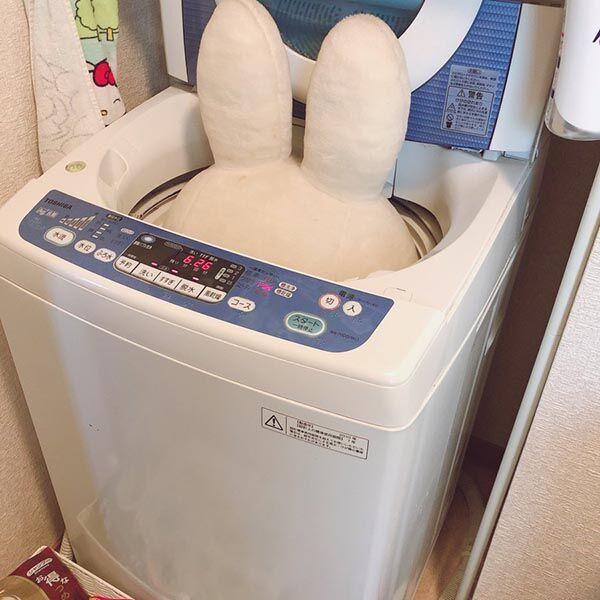 洗濯機を前に呆然とする夫婦 まさかの光景に爆笑「かくれんぼ下手か」「かわいい」