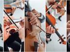 ヒット曲『パプリカ』をオーケストラで演奏した結果? 「まさか泣くとは…」の声