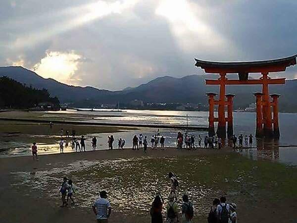 世界遺産厳島神社の大鳥居に羽ばたく鳳凰の姿に感動の嵐!